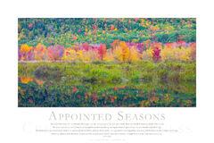 Appointed Seasons print