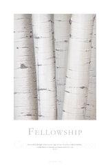 Fellowship print