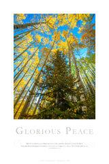 Glorious Peace print