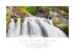 Life Ever After print