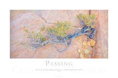 Passing print