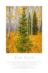 The Gift print