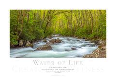Water of Life print