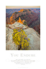 You Endure print