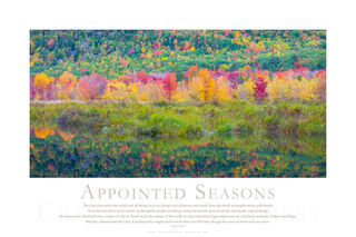 Appointed Seasons