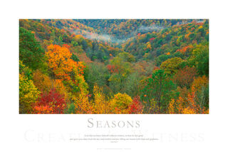 Colorful Fall Trees, Great Smoky Mountains