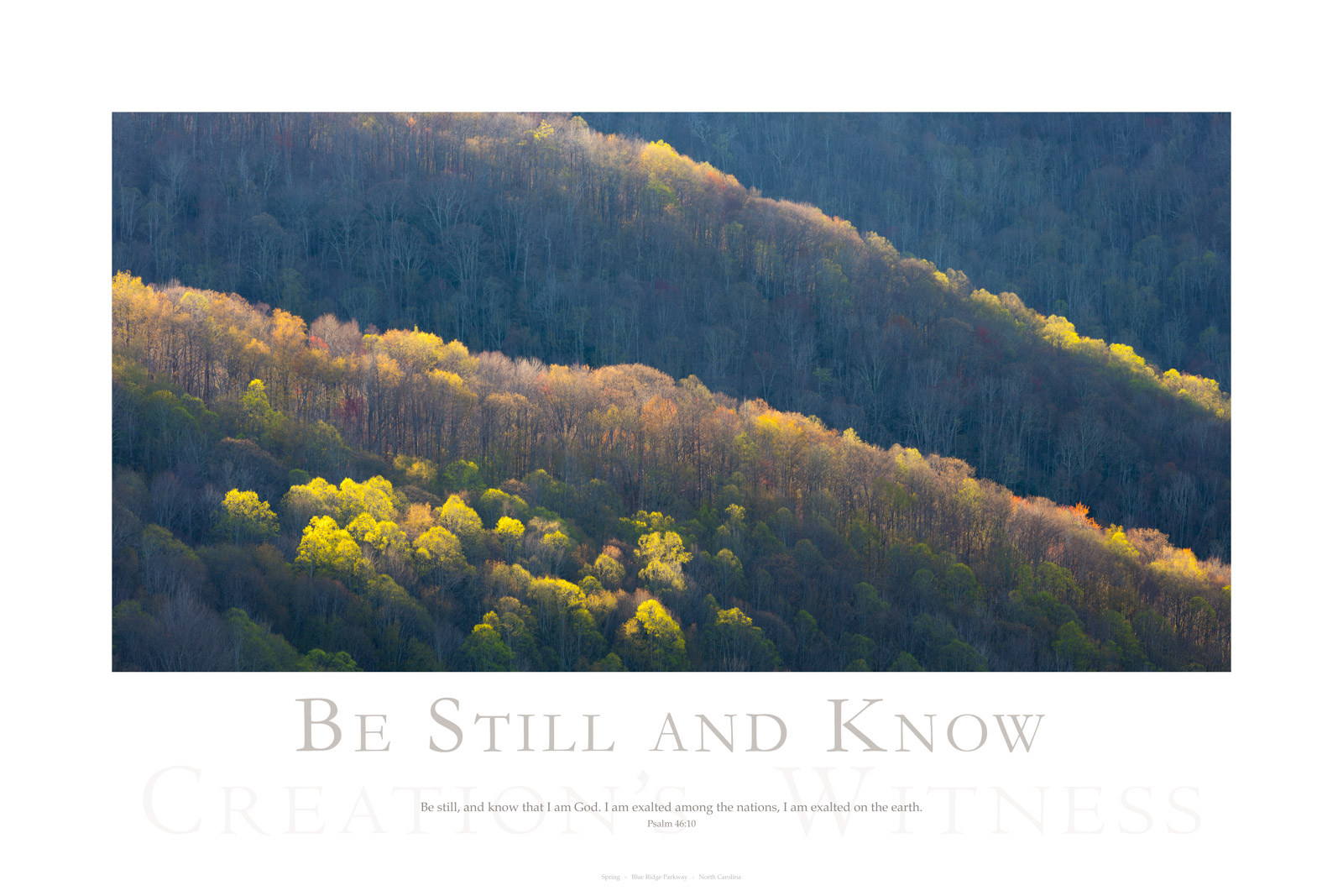 Be still, and know that I am God. I am exalted among the nations, I am exalted on the earth. Psalm 46:10