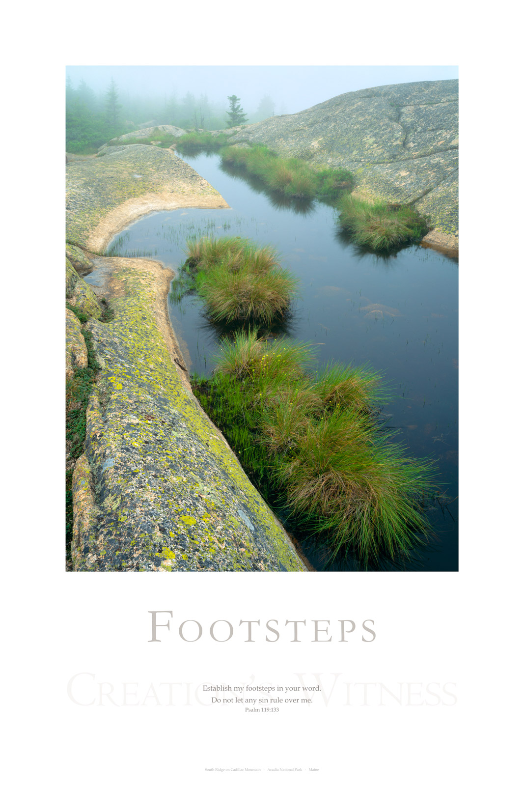 Establish my footsteps in your word.     Do not let any sin rule over me. Psalm 119:133