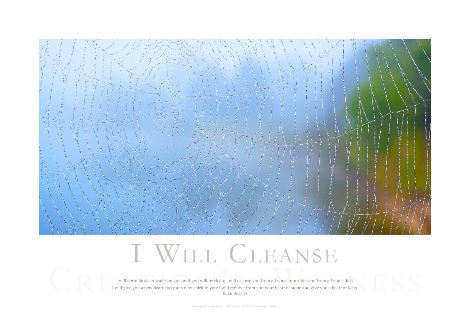 I will sprinkle clean water on you, and you will be clean; I will cleanse you from all your impurities and from all your idols...