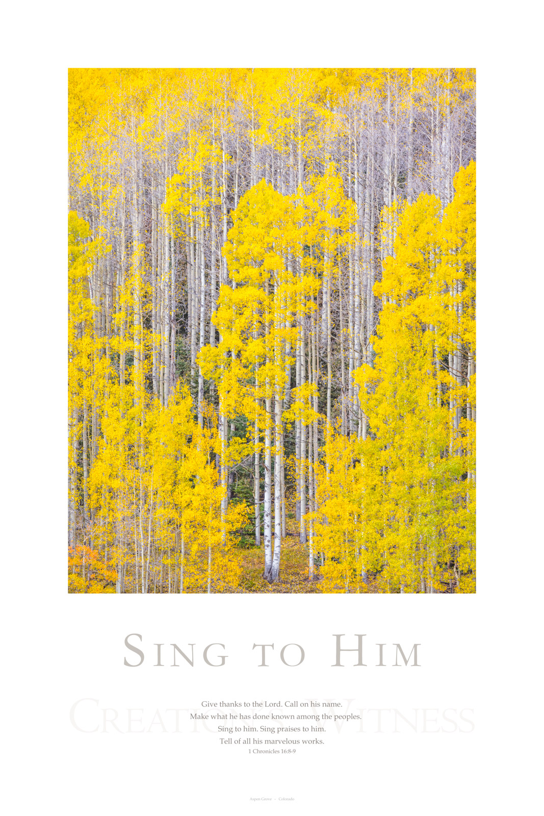 Give thanks to the Lord. Call on his name.     Make what he has done known among the peoples. Sing to him. Sing praises to him...