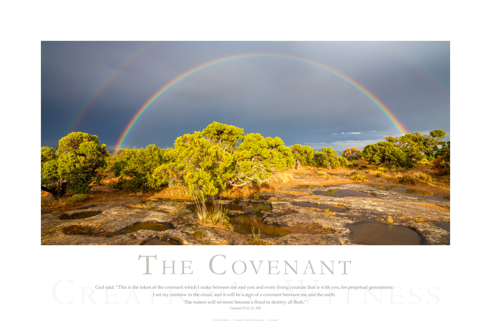 """God said, """"This is the token of the covenant which I make between me and you and every living creature that is with you, for..."""